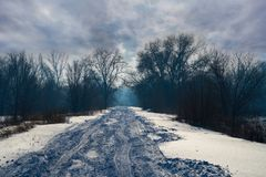 Winter road in mystical forest. Winter road in light fog in the mystical forest Royalty Free Stock Photo