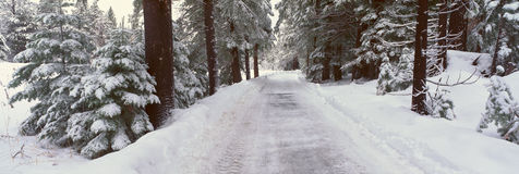 Winter Road Near Lake Tahoe Royalty Free Stock Images