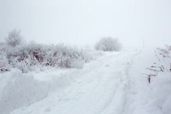 A winter road in Orenburg region. A winter road to the field. Shot in Orenburg region of Russian Federation stock photos