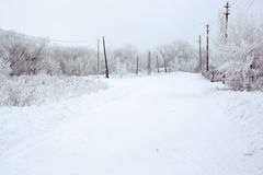 A winter road in Orenburg region. A winter road in the village. Shot in Orenburg region of Russian Federation royalty free stock photography