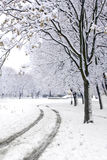 Winter road in park Royalty Free Stock Image