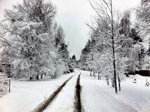 Winter road. In Russia Stock Photo