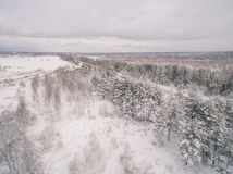 Winter road. Russia, near Moscow royalty free stock photo