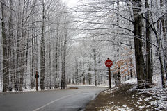 Winter Road Scene Royalty Free Stock Image