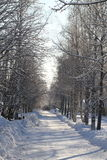 Winter road Royalty Free Stock Photography