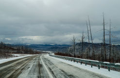 Winter road in Siberia Royalty Free Stock Photos