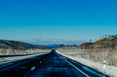 Winter road in Siberia Stock Images