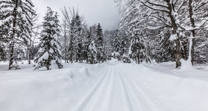 Winter Road, Sixt Fer A Cheval, France royalty free stock photography