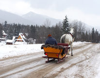 Winter road with sledge and horse Royalty Free Stock Photography