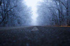 Winter road. Snow-covered road in winter Royalty Free Stock Photos