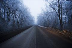 Winter road. Snow-covered road in winter Stock Image