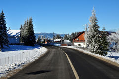 Winter road with snow covered spruces in the mountains Royalty Free Stock Photography