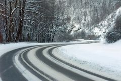 Winter-road. Snow covered trees lining road receding into distance, winter scene Stock Photography