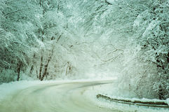 Winter road  with snow-covered trees in Rusia Stock Photos