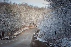 Winter road in snow fores Royalty Free Stock Images