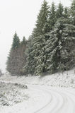Winter road. Road with snow and ice stock photo