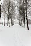Winter road , snow Royalty Free Stock Photo