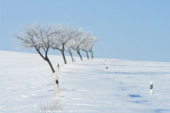Winter, road, snowdrift Stock Photo