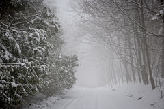 Winter road during snowfall Stock Photography