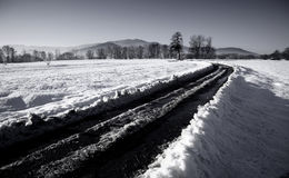 Winter road through snowy fields. On a sunny winter day Stock Photo