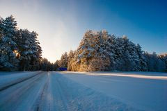Winter road in snowy forest. Cold weather landscape royalty free stock photo