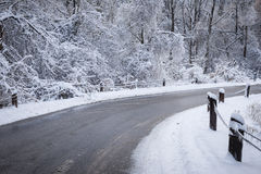 Winter road in snowy forest Royalty Free Stock Photo