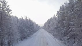 Winter road in a snowy forest. Winter day. Treetop. Moving the camera forward stock footage