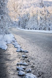 Winter road in snowy forest Royalty Free Stock Image