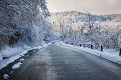 Winter road in snowy forest Royalty Free Stock Photos