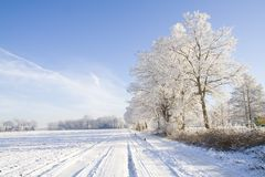 Winter road and snowy landscape Stock Photos