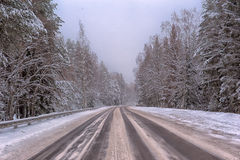 Winter road. With some fog, Russia Royalty Free Stock Image