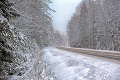 Winter road. With some fog, Russia Stock Image