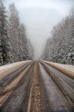 Winter road. With some fog, Russia Royalty Free Stock Photo