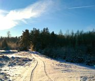 Winter road in sun Stock Photography