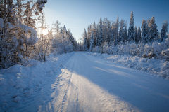 Winter road in sunny day Royalty Free Stock Photo