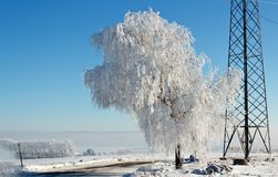 Winter road on a sunny frosty day Royalty Free Stock Photo