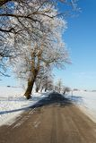 Winter road on a sunny frosty day Royalty Free Stock Photos