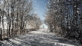 Winter road on a sunny frosty day with blue sky and snow stock footage
