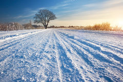 Winter road at sunrise Royalty Free Stock Photos