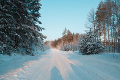 Winter road at sunset in snow covered forest, ural, horizontal Stock Images