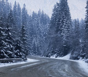 Winter road surrounded by snow - covered trees Royalty Free Stock Image