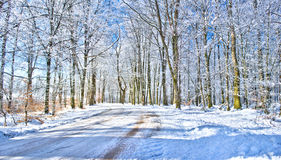 Winter road in the Swedish countryside Royalty Free Stock Photography