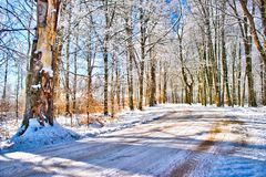 A Winter road at the Swedish woodlands Stock Photography