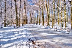 A Winter road on the Swedish woodlands Royalty Free Stock Photography
