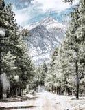 Winter Road to Humphrey`s Peak in Flagstaff Arizona stock images