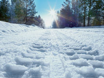 Winter road to a sun Stock Photography