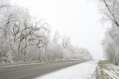 Winter Road with Trees Covered with Frost and Snow in the Fog Royalty Free Stock Image