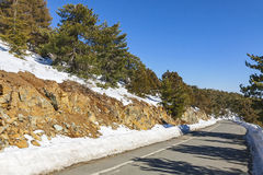 Winter road in Troodos mountains, Cyprus Royalty Free Stock Images