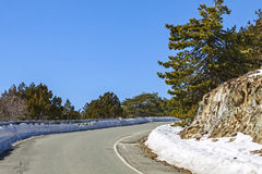 Winter road in Troodos mountains, Cyprus Royalty Free Stock Photography