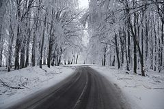 Winter Road Turns Stock Images